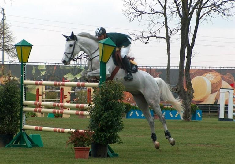 Arezzo Equestrian Centre Hotel Minerva Arezzo
